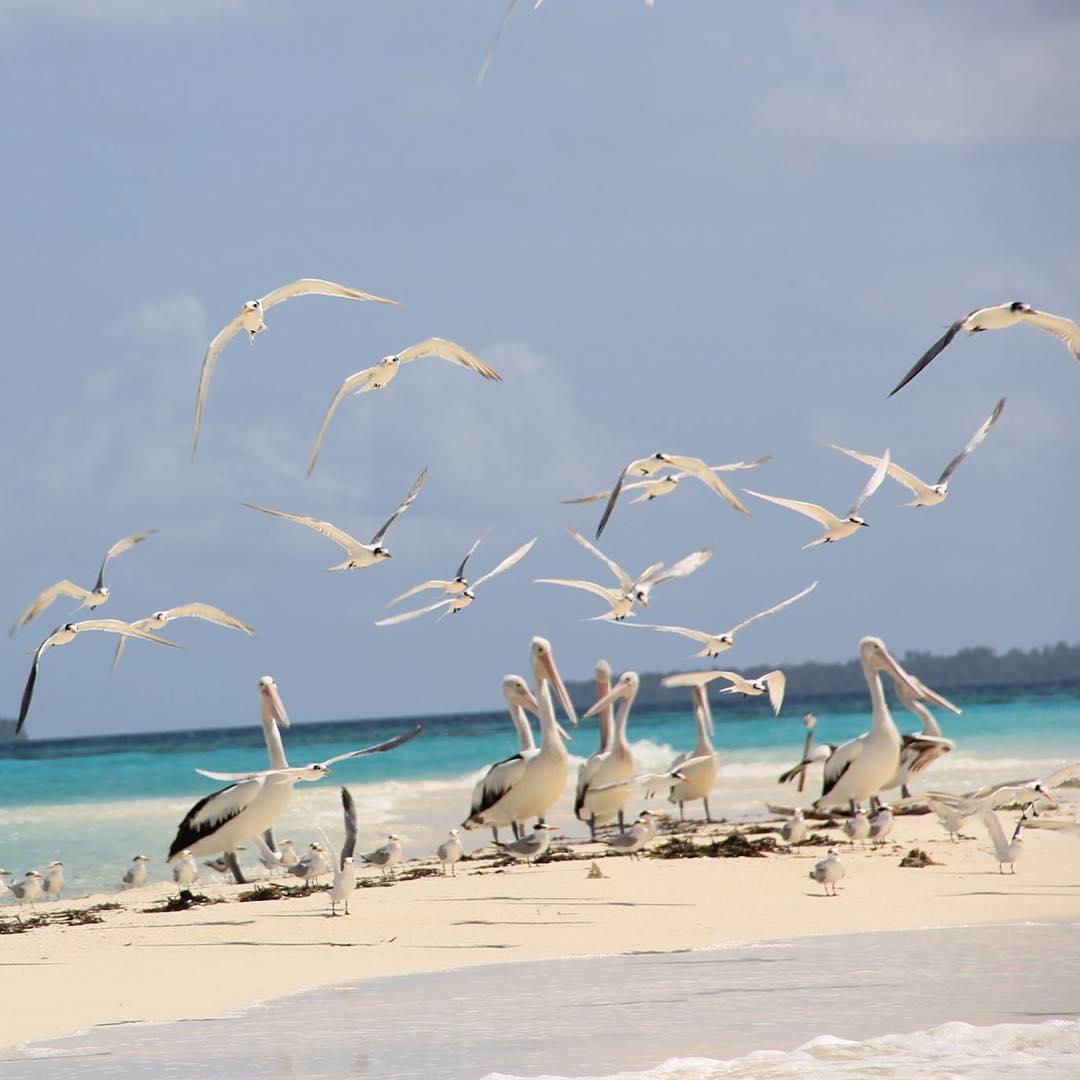Duta Travel Pencarian Paket Tour